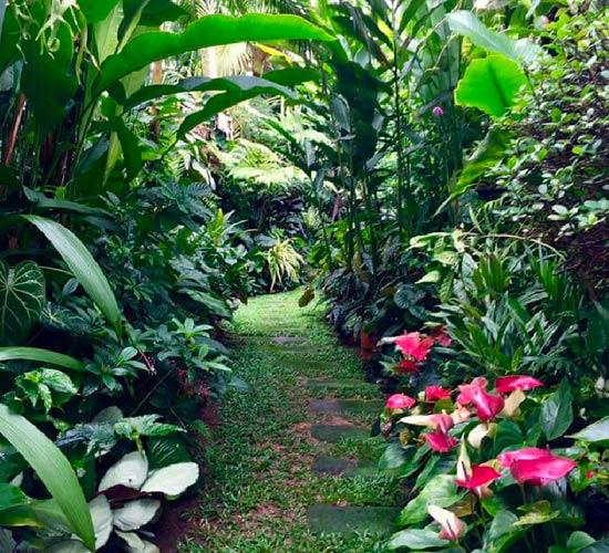 una minipiscina in giardino può farti sentire in vacanza